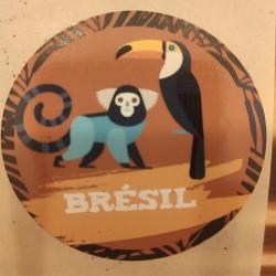 CAFÉ EN GRAIN BRÉSIL 250 g.